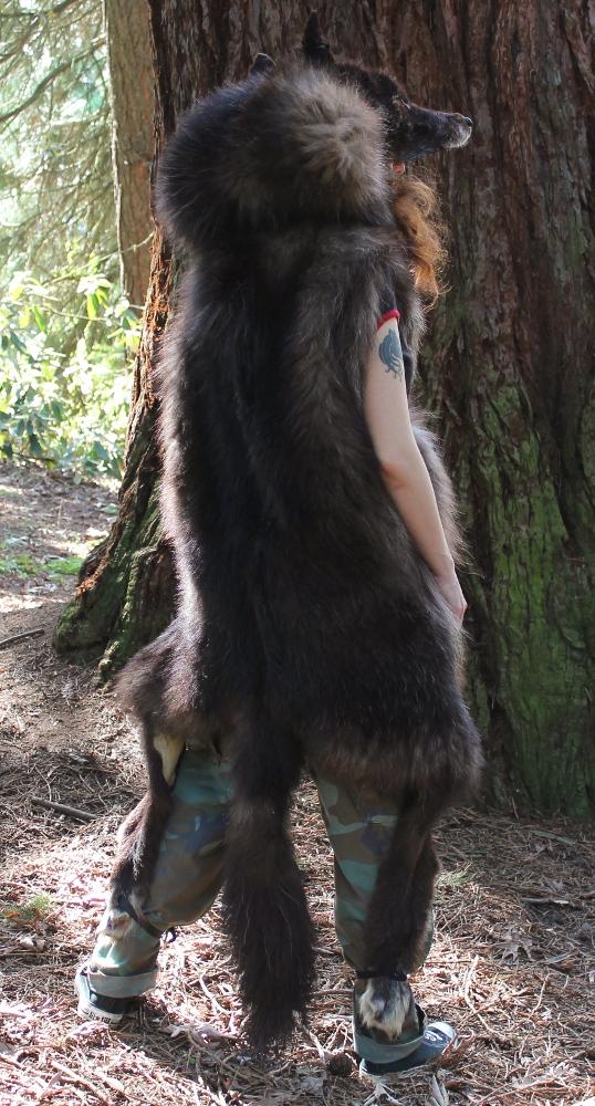 bigblackwolf2