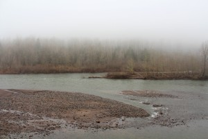The Sandy River east of Portland flowed cold and deep the day before Christmas. Lupa, 2013.